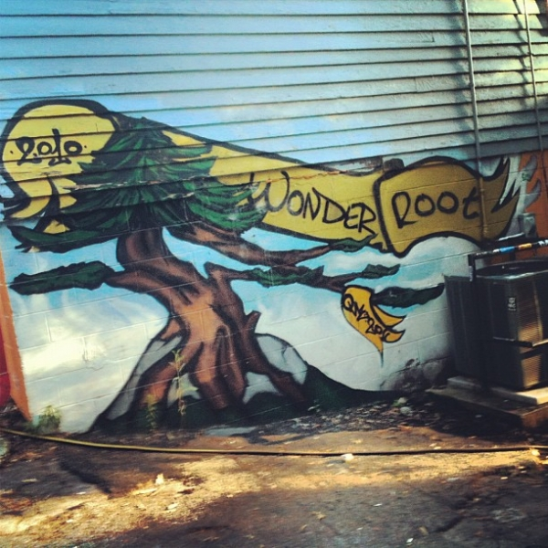 Wonderroot, Atlanta, GA.  Summer 2012