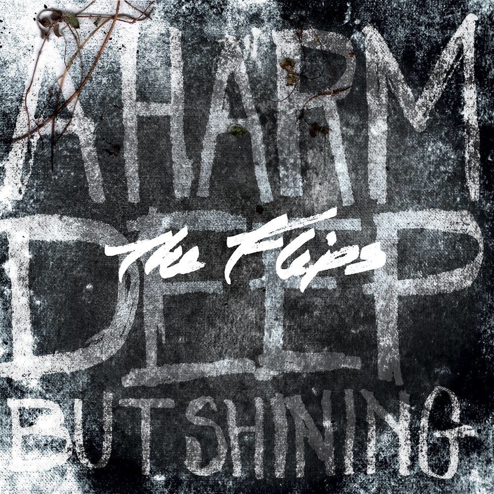 A Harm Deep But Shining   (2013)