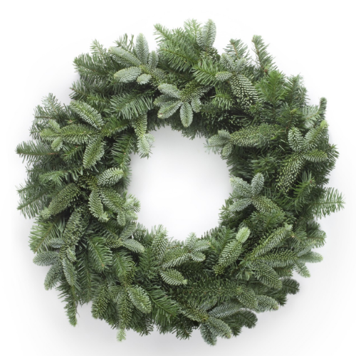 Naked blue fir wreath