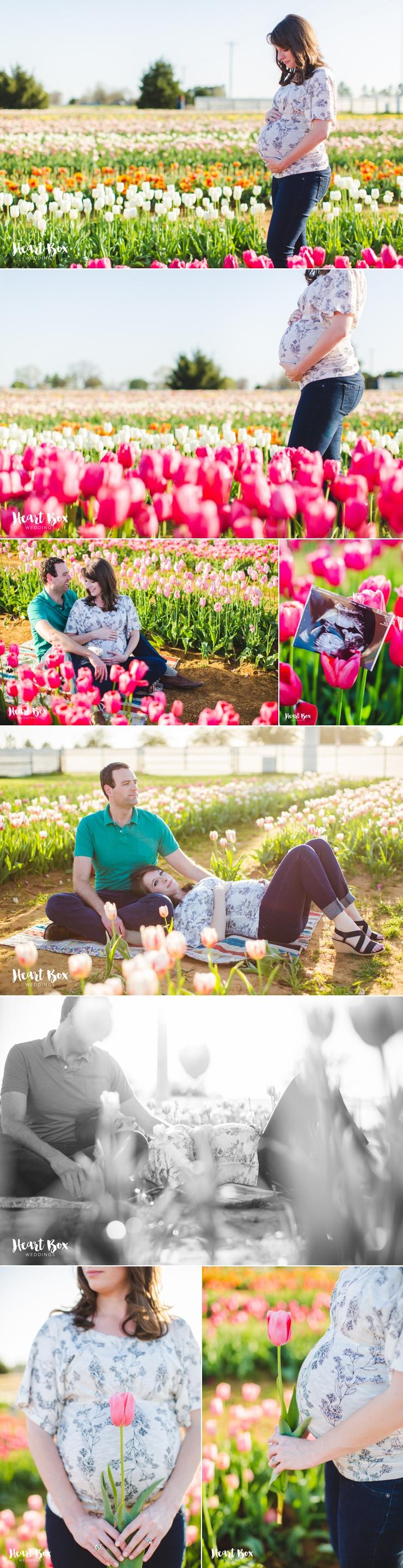 Jackson Maternity Blog Collages 1.jpg