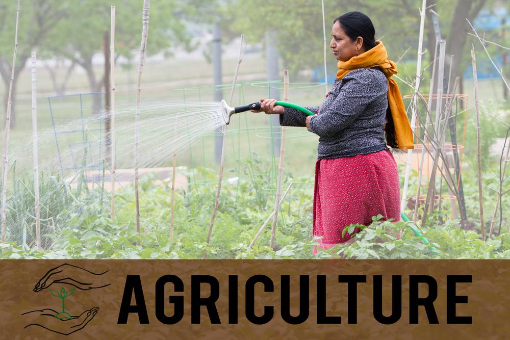 AgricultureTab.jpg