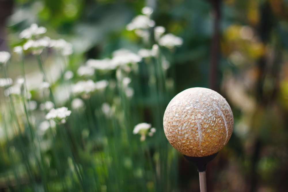 Ellingsen Photography Walk Through the Garden-Globe Light