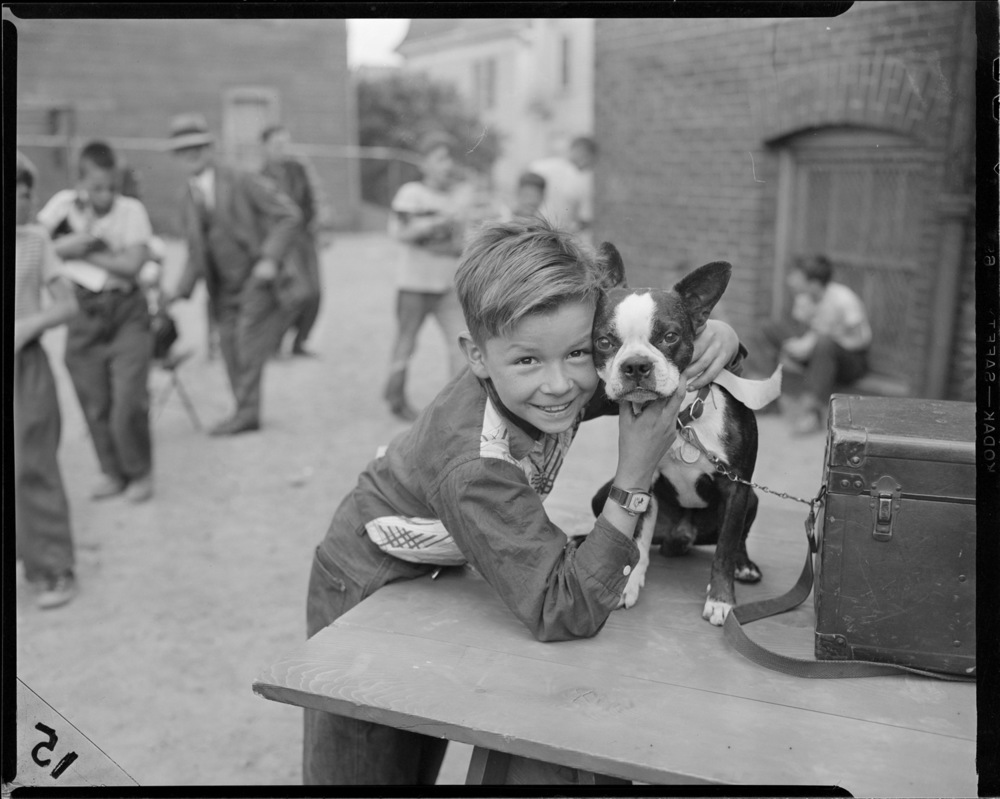 Boy with Terrier by Leslie Jones