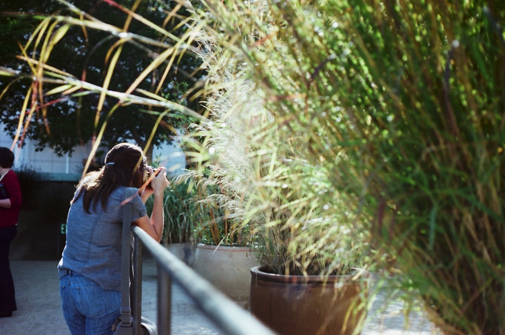 Ellingsen Photography The Getty Museum on Fujicolor Film Nikki Rae
