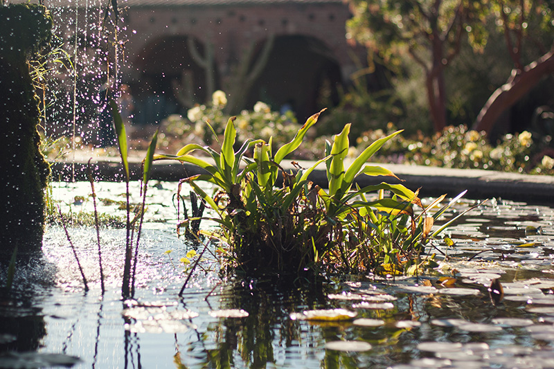 Mission San Juan Capistrano Orange County Day Trips by Ellingsen Photo