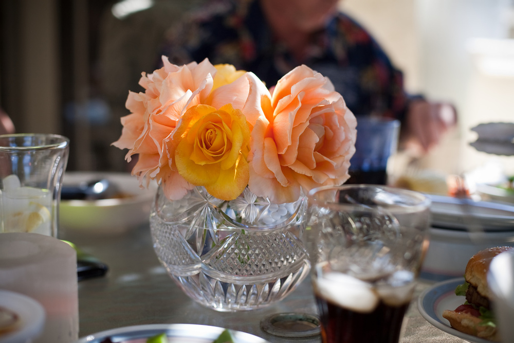 Ellingsen Photography Family Summer BBQ-Roses