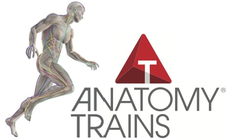 anatomy-trains-pilates-chicago.png