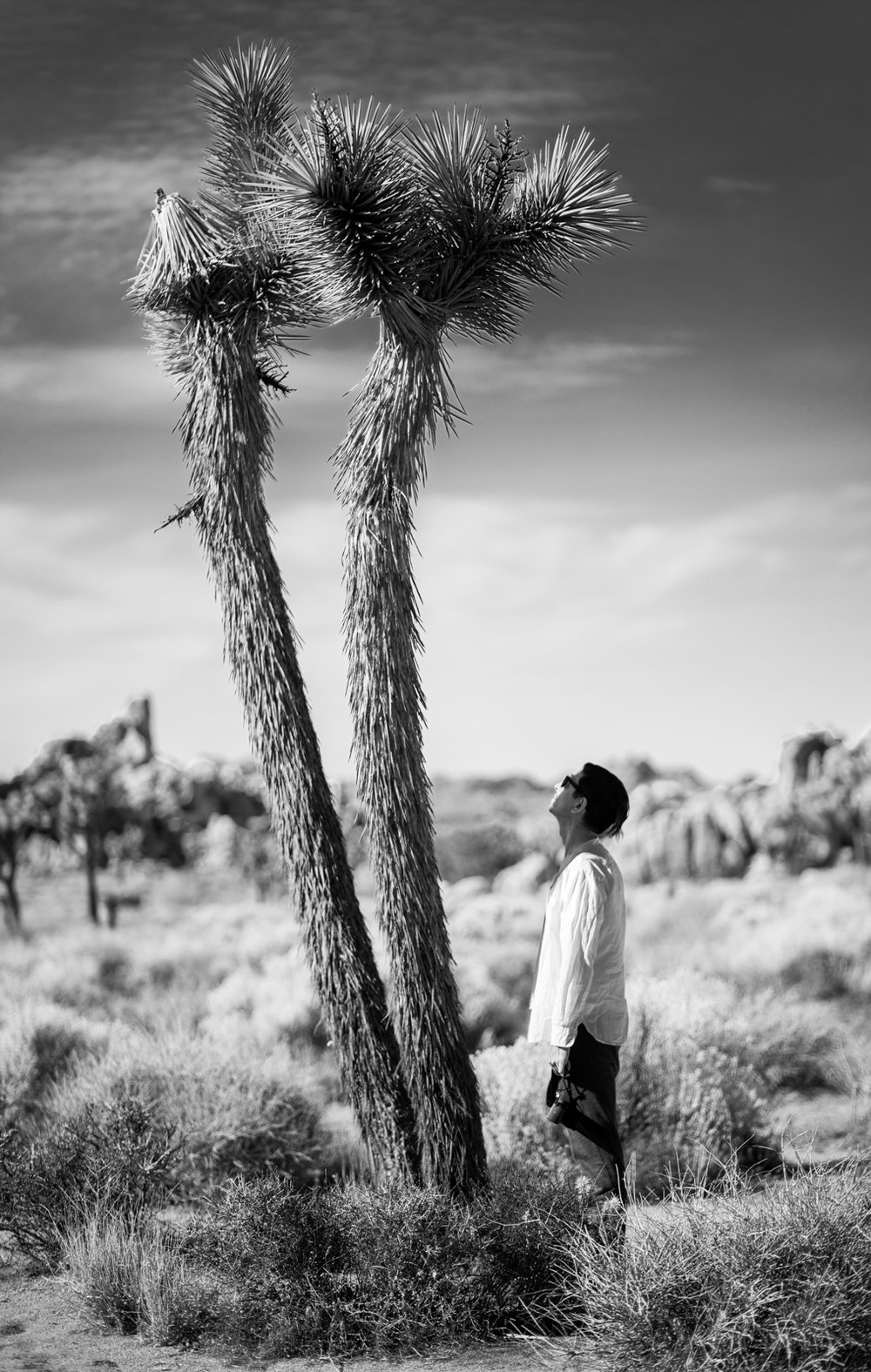 alexa_wright_joshua_tree-7.jpg