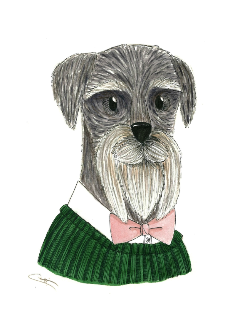 Schnauzer made using pencils, fine liner, watercolour and Canson Heritage hot pressed watercolour paper.