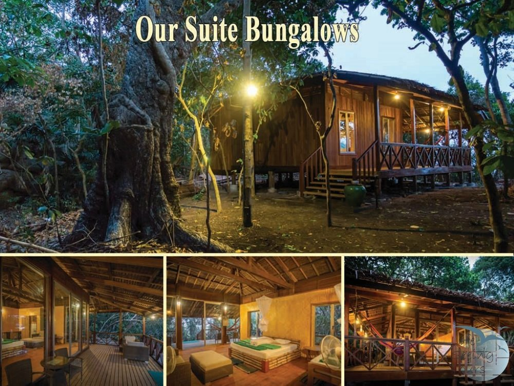 Our Suite Bungalows (Medium).jpg