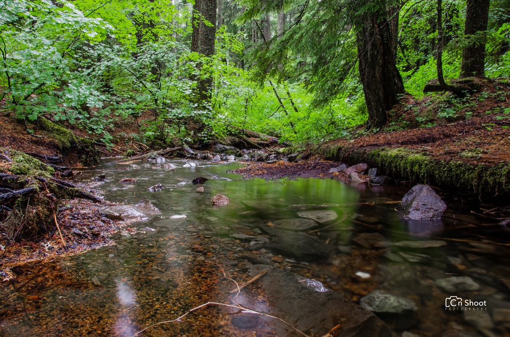 Salt Creek Falls -4.jpg