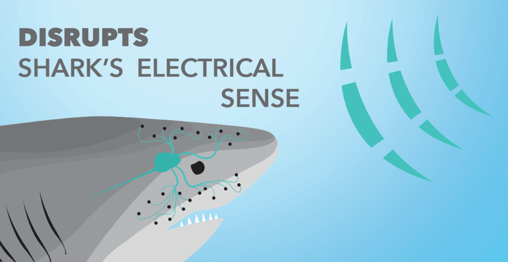 Sharkbanz2-Product-Science-2.png