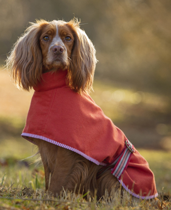 Sew Your Own Dog Coat pattern from Redhound for Dogs