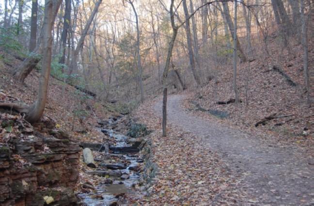 Falls Ravine Trail