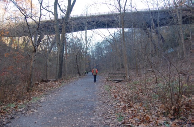 Forbes Avenue Bridge from Tranquil Trail