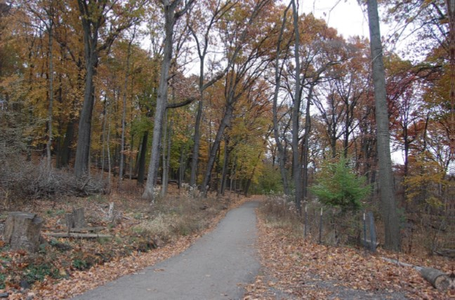 Entrance to Clayton Loop Trail encircling Frick Woods Nature Preserve