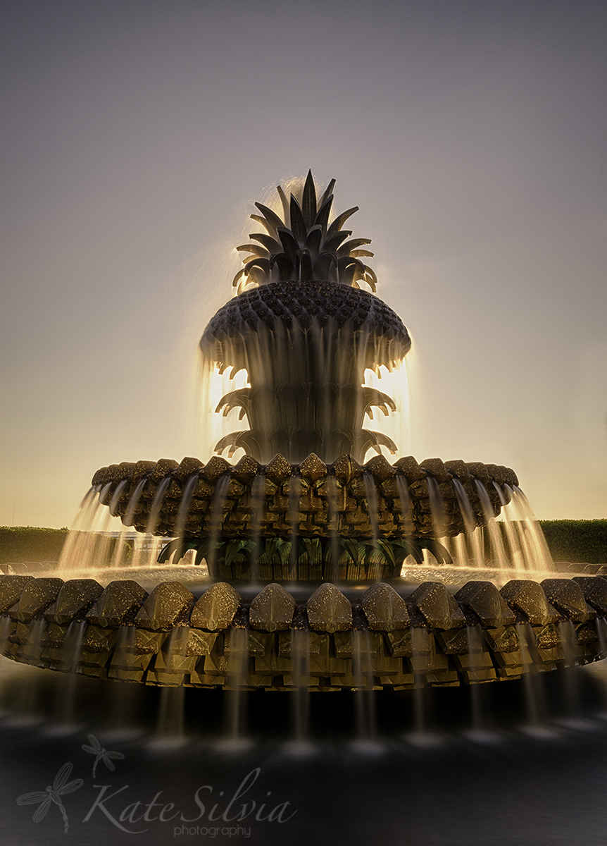 pineapplefountainLE