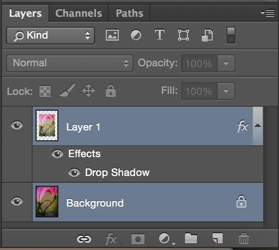 layerspalate