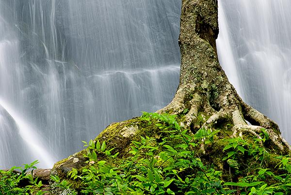 Crabtree Falls.jpg