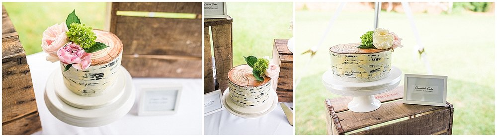 Wedding_Asheville_Photography_Junebug_Retro_Resort_14.jpg