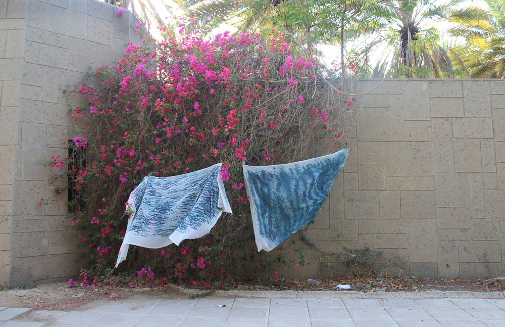 Bougainvillea , Hung up to dry, 2016