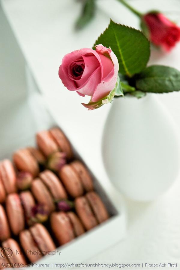 Macarons-RosewaterRaspberry03-CR-MeetaK.jpg