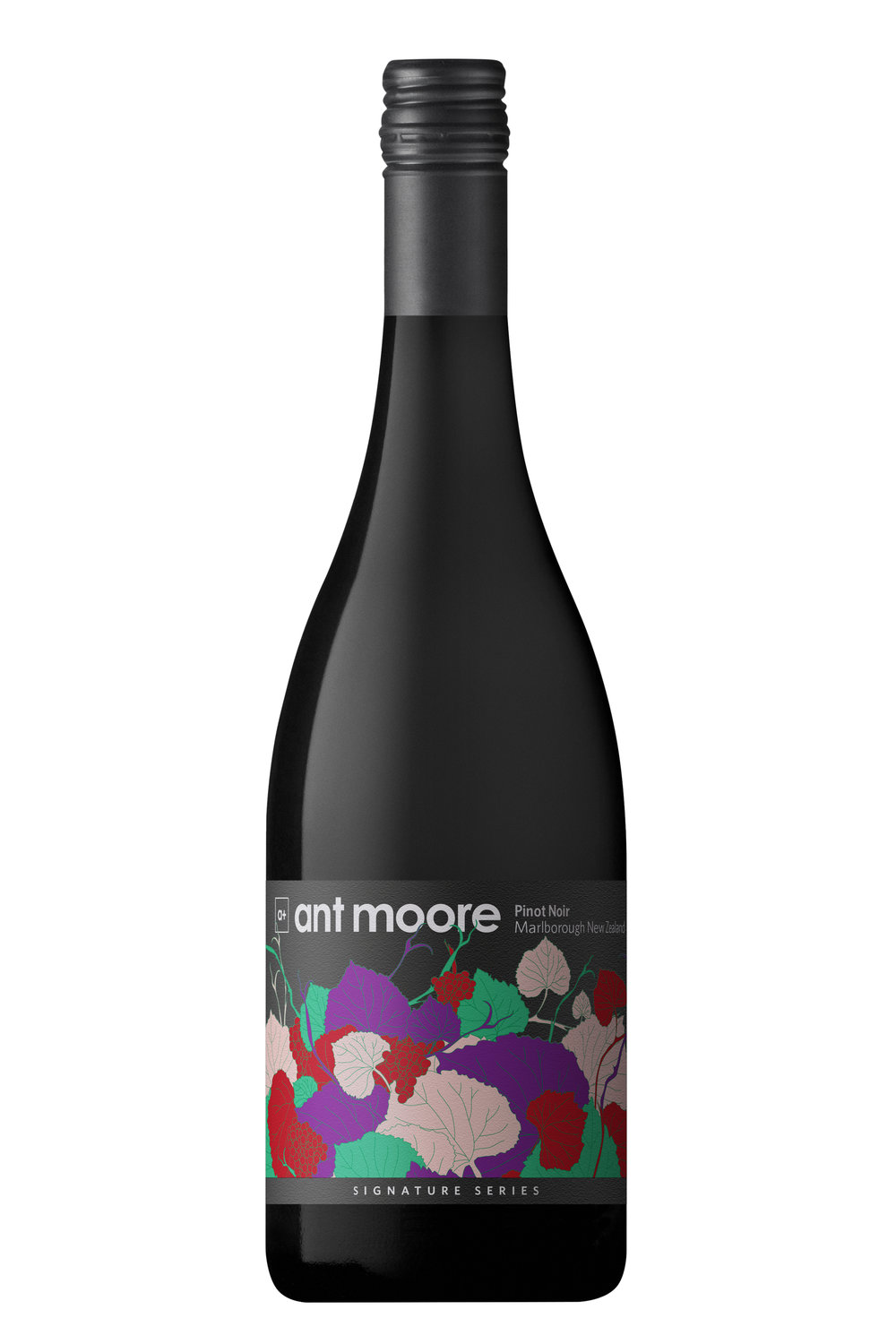 Ant Moore Signature Series Pinot Noir 2017 - Blackberry, plum, pepper, liquorice and leather are great descriptors for this wine. Subtle oak and full tannin structure gives roundness which lingers on the palate.