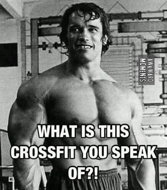 Arnold 1 (Used).jpg