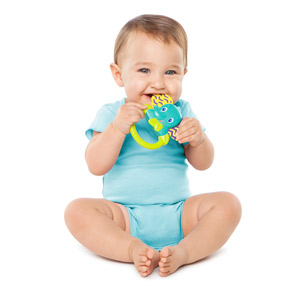 Flexi-Zoo Teether™