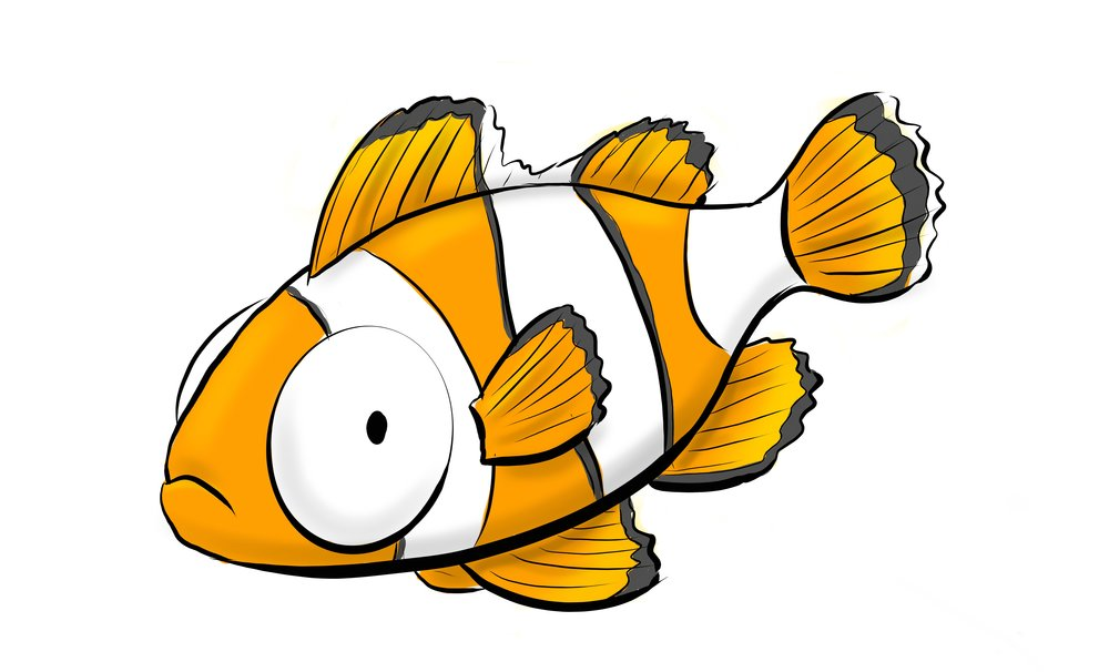DF_ClownFish_color.jpg