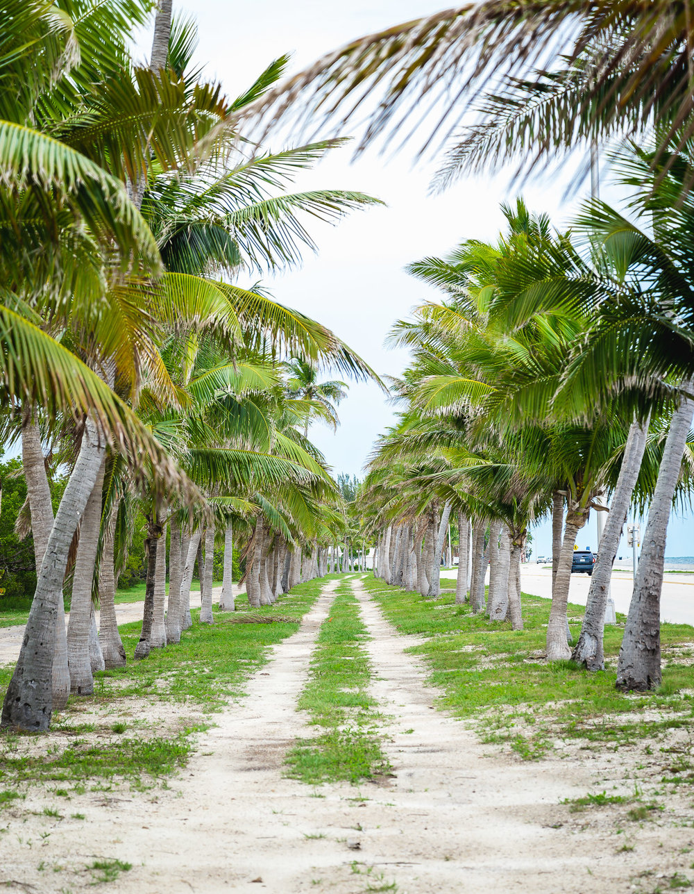 24 north hotel key west bike path smathers beach
