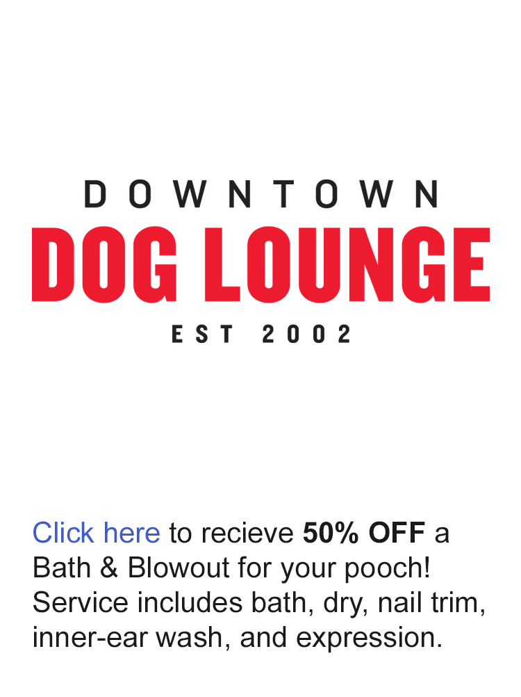 Downtown-Dog-Lounge-Offer-Logo.png