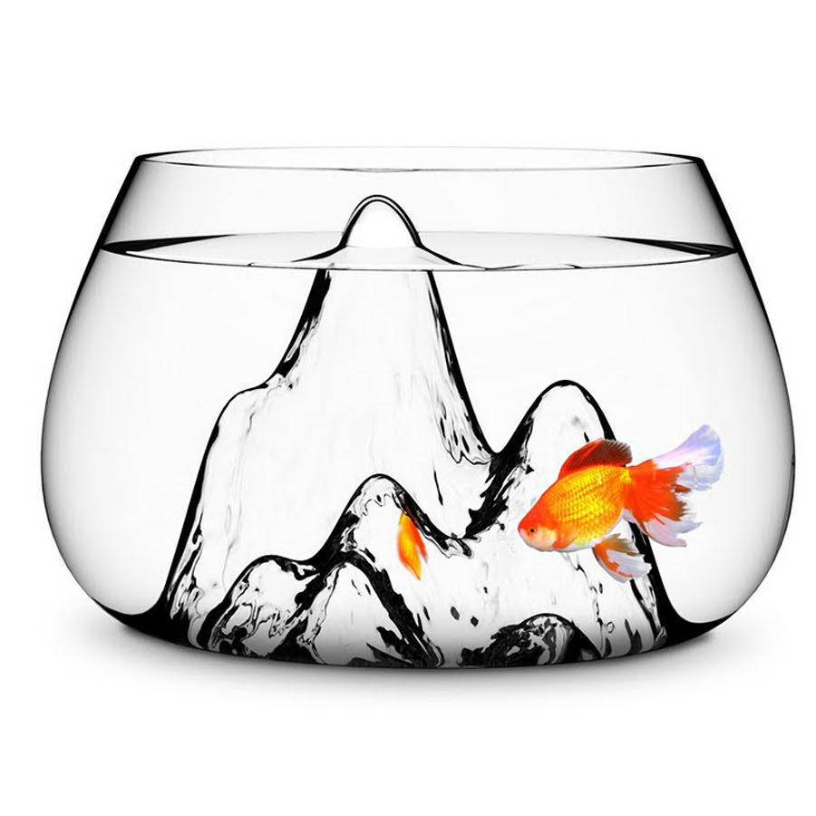 this fish bowl is like an art piece. honestly, i would count this as an accessory on an open bookshelf, kitchen island or entryway table. glasscape fishbowl by aruliden. get it at stardust modern  here.