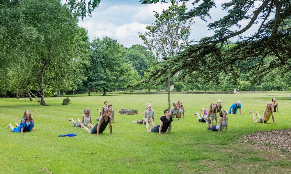 Parmoor 6.17 up dog lawn
