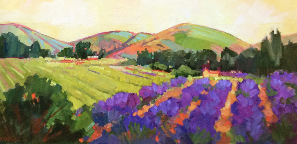 Bennett Valley Lavender