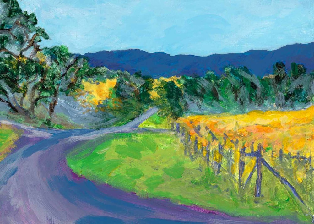 Fall Vineyard, Anderson Valley