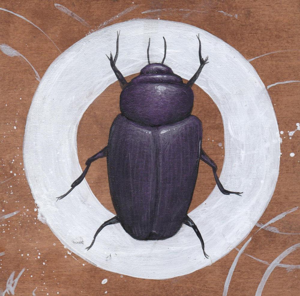 Beetle #1