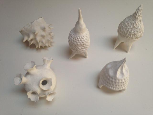 Diatom Series