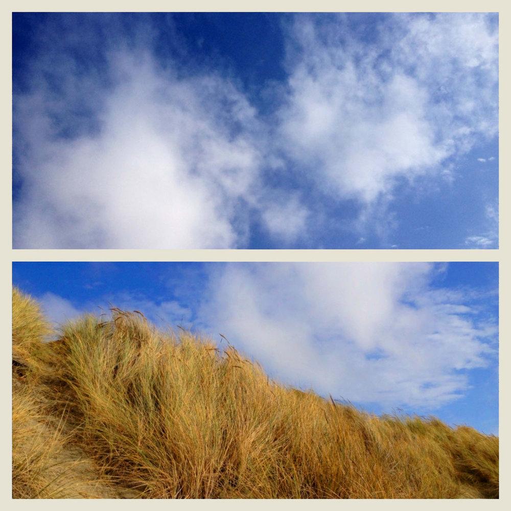 Sky:Shore