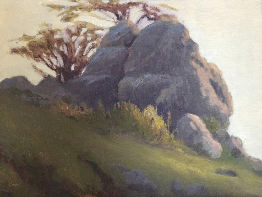 Marin Rocks!