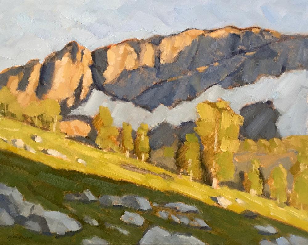 Spring in the Sierra