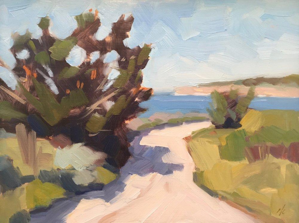 Path by the Sea, Carmel
