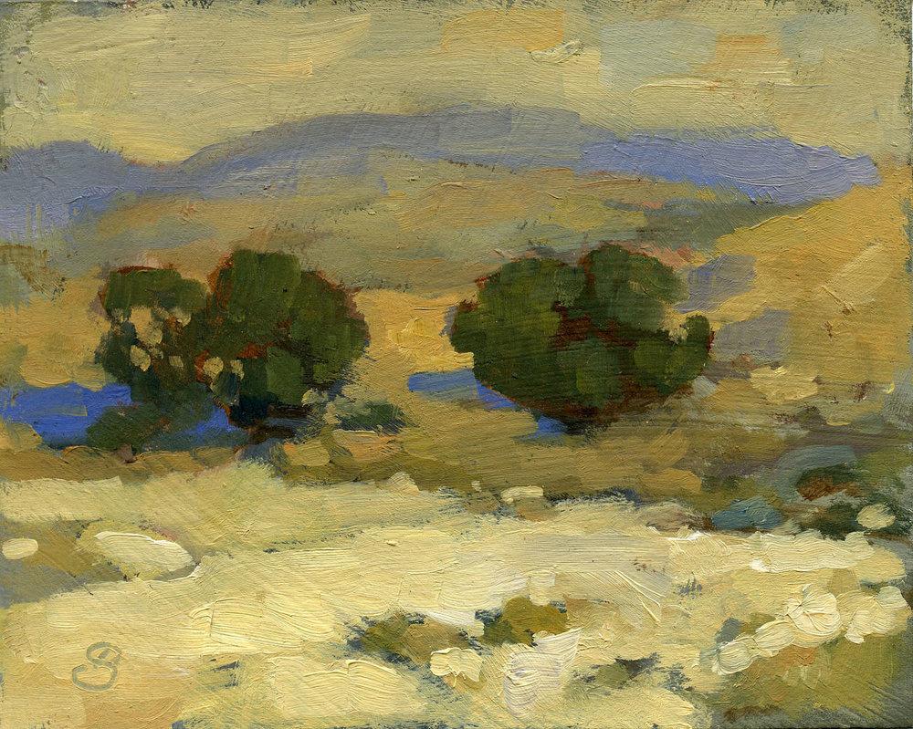 Monterey Oaks (after Mathews)