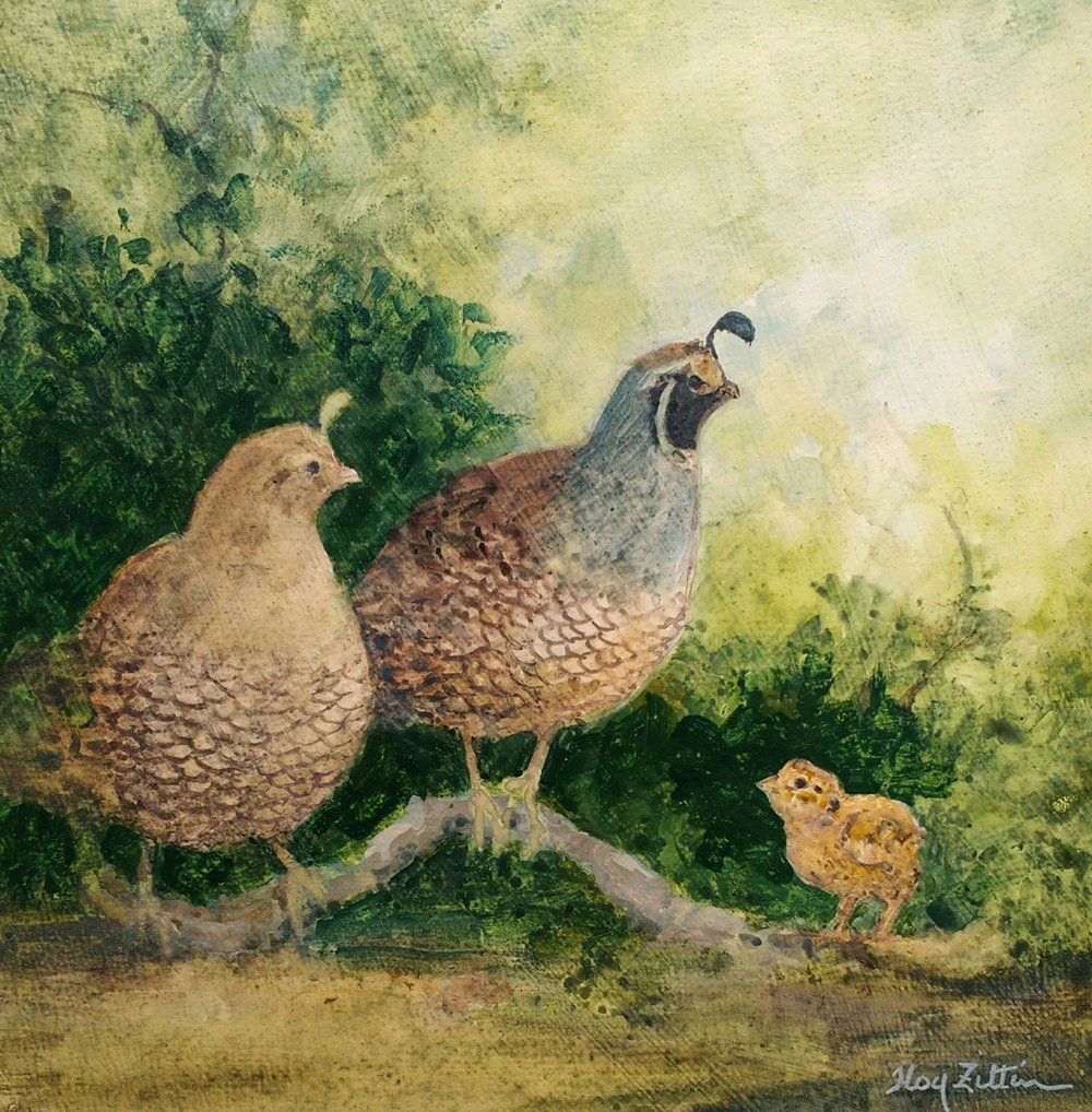 Quail with Chick