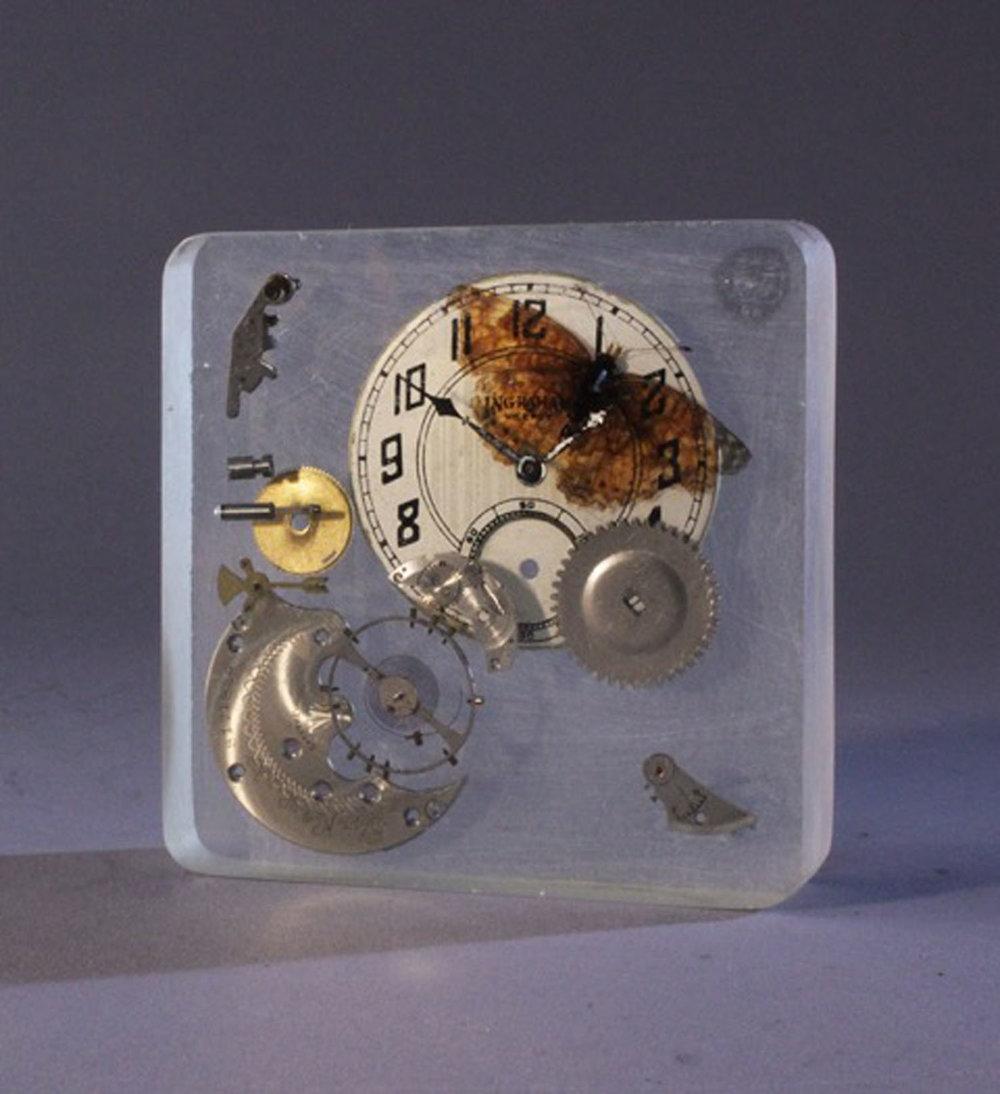 Time Flies, Orange Butterfly