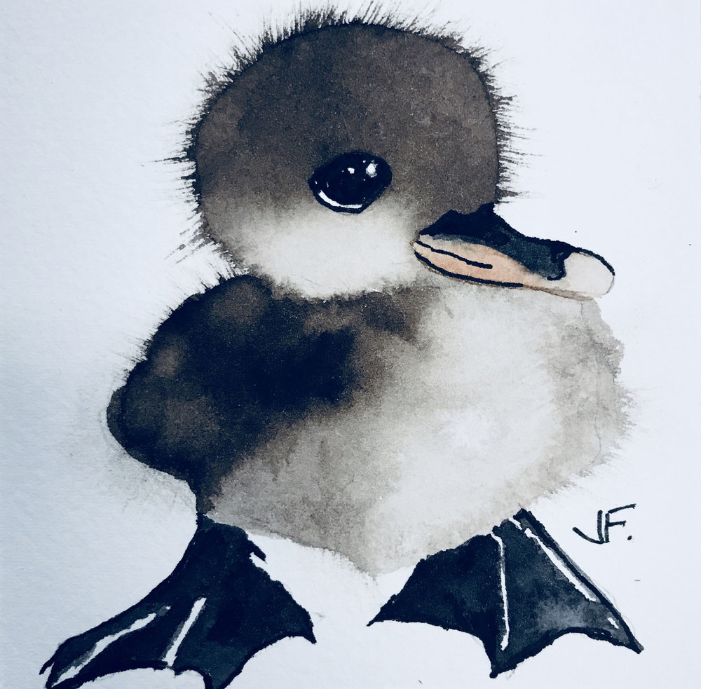 Henry Duckling
