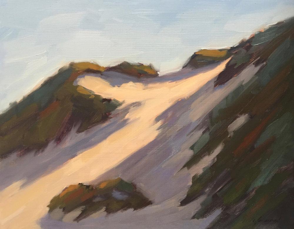 Pescadero Dunes #2