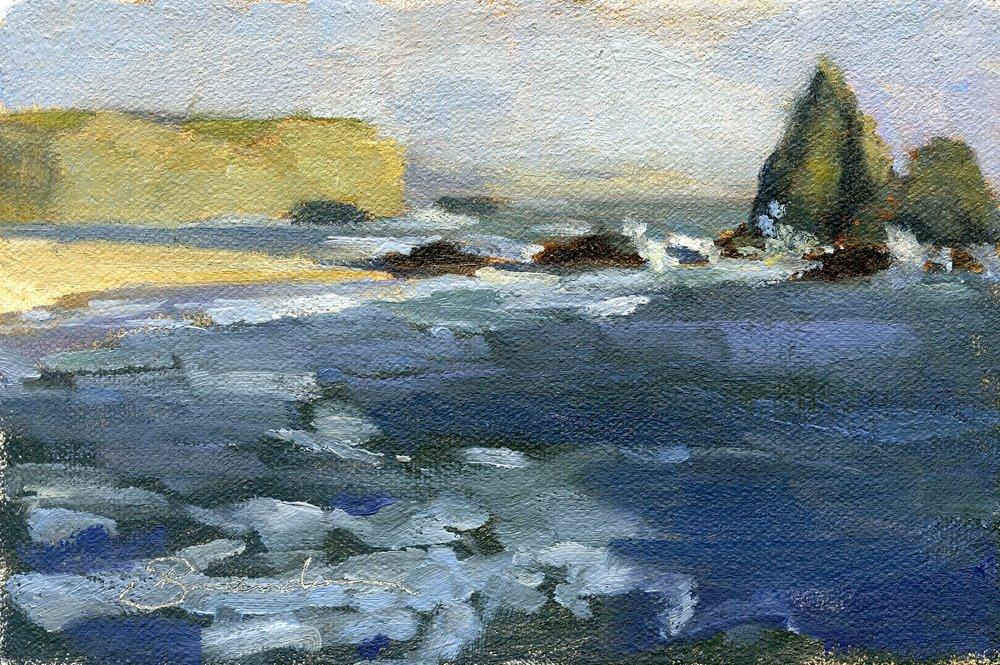 Martin Beach Study
