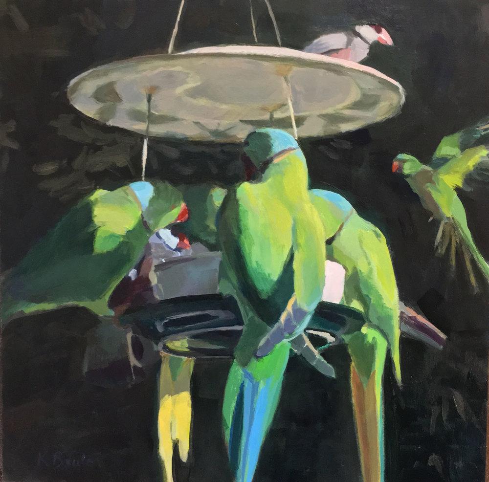 Parakeet Feeder