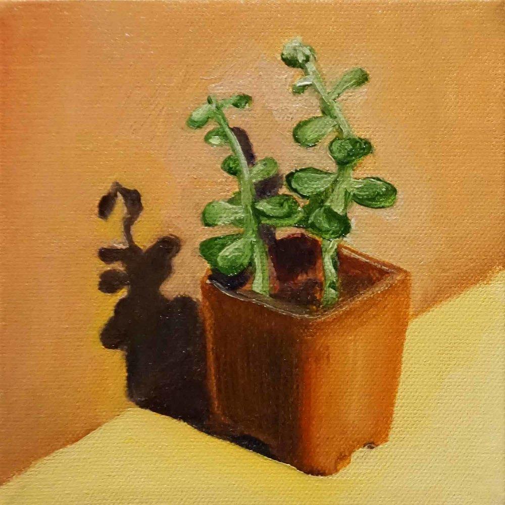 Mini Succulent 2